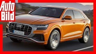 Audi Q8 (2018) Details / Review