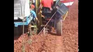 preview picture of video 'PLANTACIÓN DE OLIVAR SUPERINTENSIVO EN LA CARLOTA'