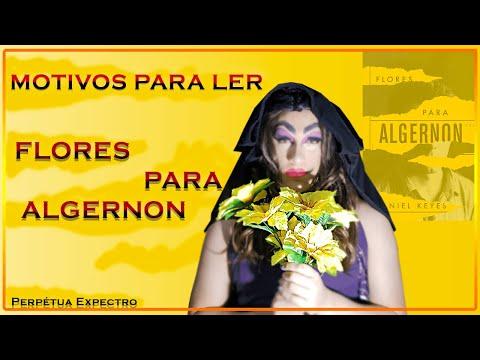 Motivos para ler: Flores para Algernon | Expectro Literário