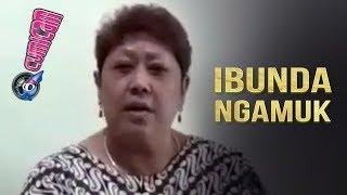Video Kumala Sari Syok Ibunda Ngamuk di Media Social - Cumicam MP3, 3GP, MP4, WEBM, AVI, FLV September 2019