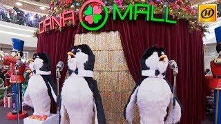 Dana Mall представит новое праздничное шоу «Театр чудес» 15 декабря
