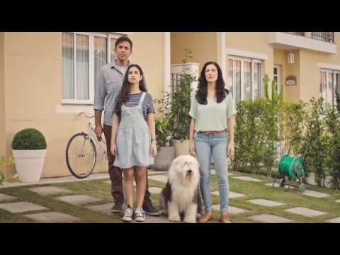 Dulux Weathershield Commercial