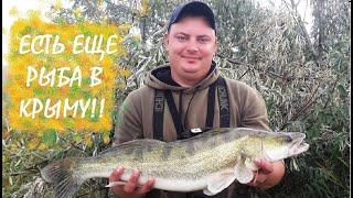 Рыбалка на пресных водоемах 2020 крым
