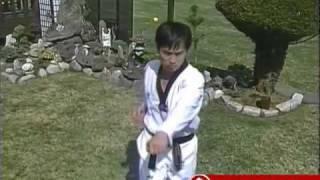 Pumsae Player Trailer - Taekwondo Form Taeguk Pal Jang - Poomsae - Poomse