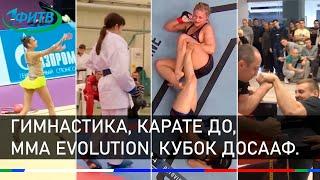Новости спорта.  Гимнастика, Карате до, MMA EVOLUTION, Кубок Досааф.