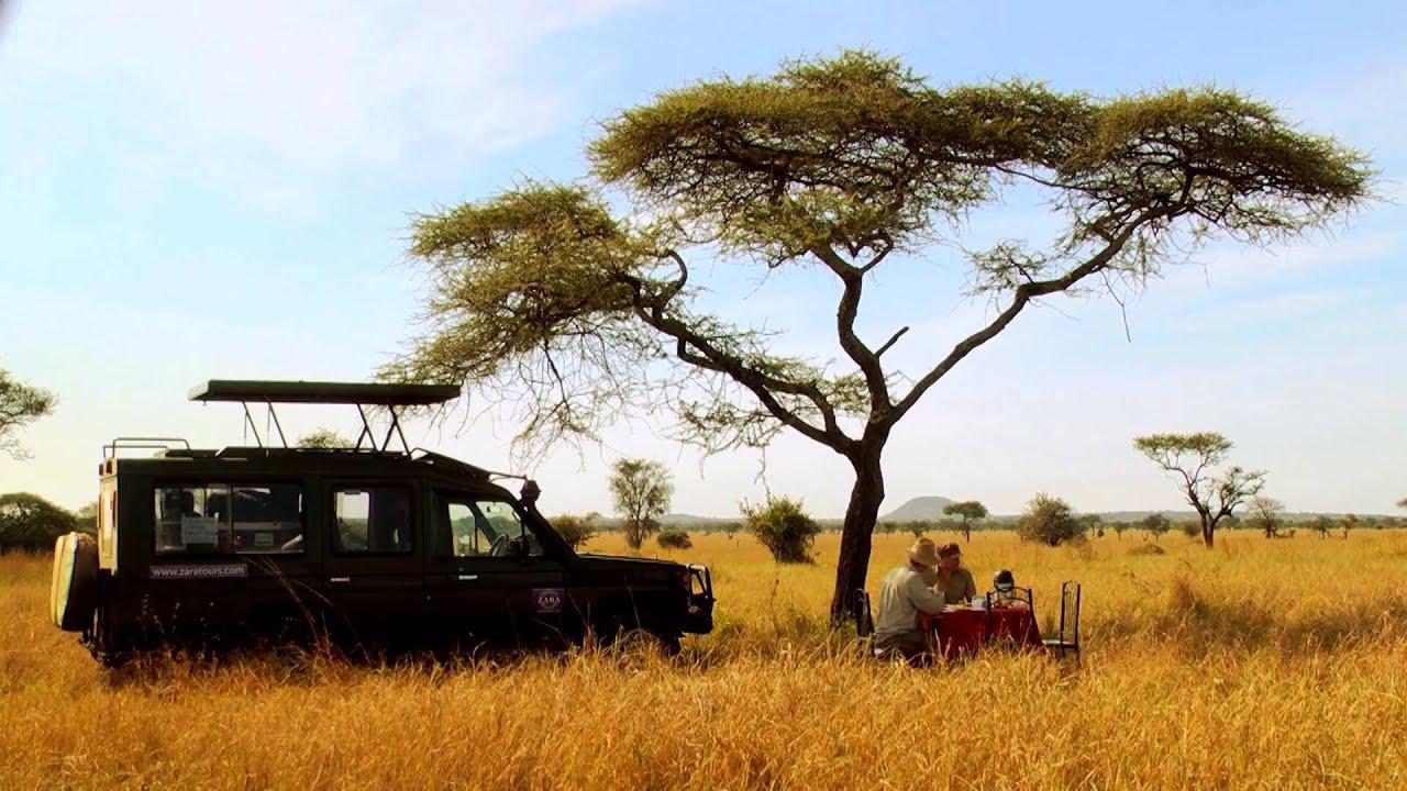 Tansania: Serengeti Natur Picknick (2:04)