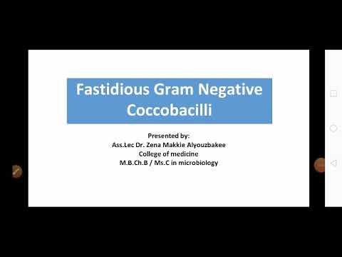 Olcsó pinworm tabletták az emberek számára
