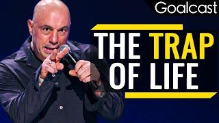 Don't Fall Into The Trap Of Life | Joe Rogan
