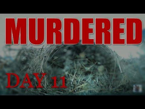 MURDERED: My Live Bird Cam Day 11