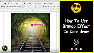 How To Use Bitmap Effect In Corel Draw || Tutorial