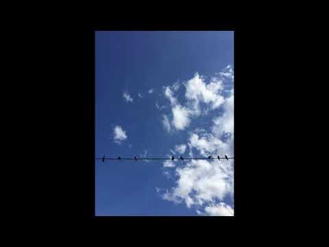 Blue_Annabell's Video 166309616343 usF059qerMI