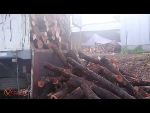Charcoal Raw material/ Nguyên liệu đốt than