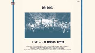 "Dr. Dog - ""That Old Black Hole"" (Full Album Stream)"