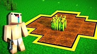 НУБИК ДЕЛАЕТ ОГОРОД — Учим Нуба Играть В Майнкрафт #8