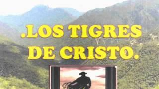 LOS TIGRES DE CRISTO MUNDO PERDIDO