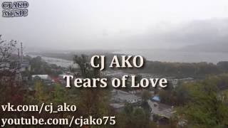 CJ AKO Tears of love Korg Kross Piano Melody пиано пианино красивая мелодия