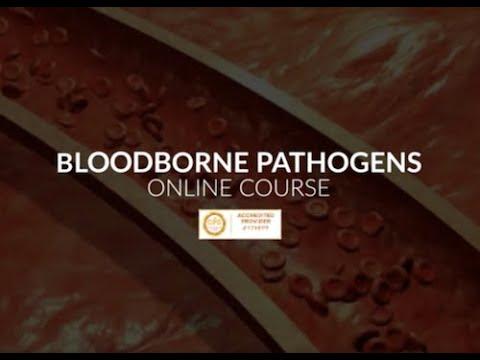 Online Bloodborne Pathogens Course - YouTube