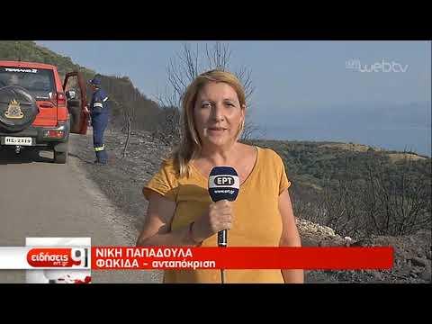 Σε ύφεση η φωτιά στη Φωκίδα | 01/09/2019 | ΕΡΤ