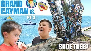 a Tree that Grows Shoes? (FV Family Cayman Islands Activities Tour)