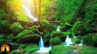 🔴 Relaxing Music 24/7, Spa Music, Calming Music, Massage Music, Meditation Music, Zen, Sleep Music
