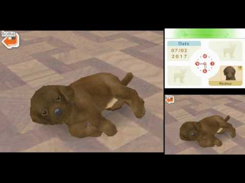 Nintendogs: Teckel Et Ses Amis - Nintendo DS - Sans Notice - Occasion
