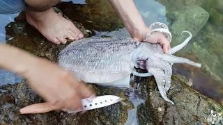 🔥🔥 HIẾU | Rất hay: Review câu cá và nướng mực tại đảo