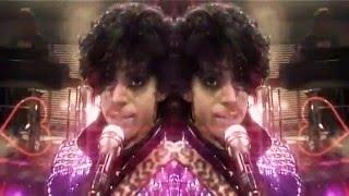 <b>Prince 1999</b> Beatnik T Future ReWork