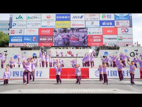 [4K] 学校法人やまもも学園桜井幼稚園 高知よさこい祭り 2019 本祭1日目