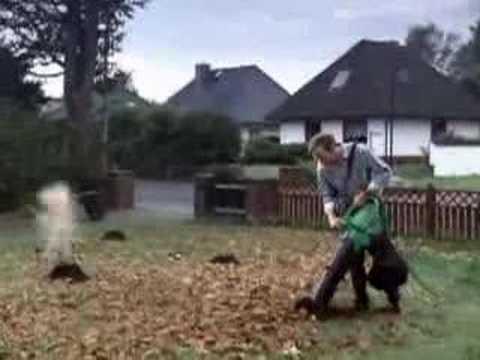 Reso danse suisse proti stárnutí