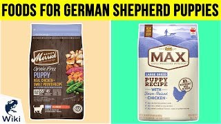 10 Best Foods For German Shepherd Puppies 2019