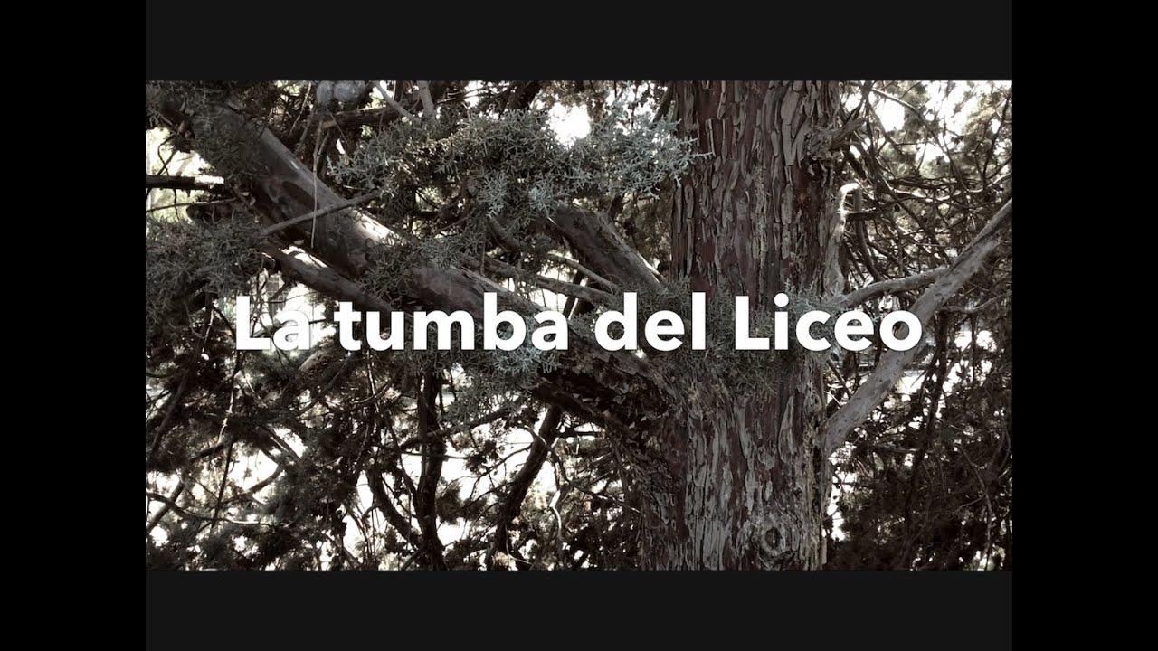 Cine para niños - La tumba del Liceo - Kids Work - Pequeños Cineastas - Kids In Black