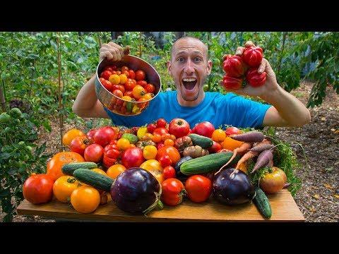 100% Organic Garden Harvest | Backyard Permaculture Gardening