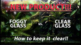 HOW TO KEEP YOUR POISON DART FROG VIVARIUM GLASS CLEAR FOREVER!!!