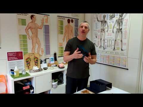 La cintura di fissaggio in osteocondrosi