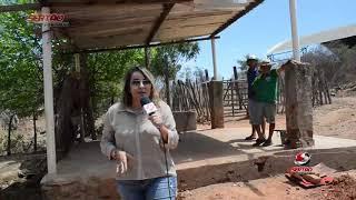 Moradores do Distrito de Engenheiro Ávidos (Boqueirão), denunciam matadouro ilegal em céu aberto