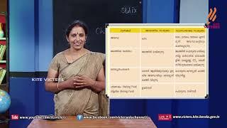 Standard 9 | Chemistry | Class – 11
