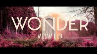 Naughty Boy - Wonder Ft Emeli Sandé (Mojam Dub Remix)