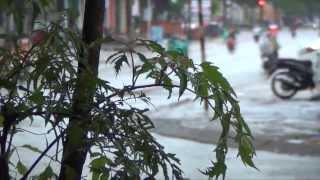 preview picture of video 'Pleiku - Mưa trên phố núi by Hungduong'