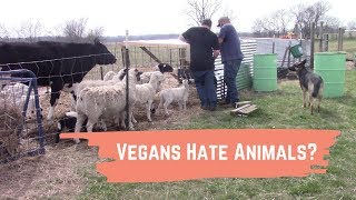 Do Vegans Really Hate Animals? Did I Just Proved It
