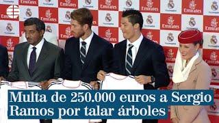 Alcobendas multa con 250.000 euros a Sergio Ramos por talar árboles