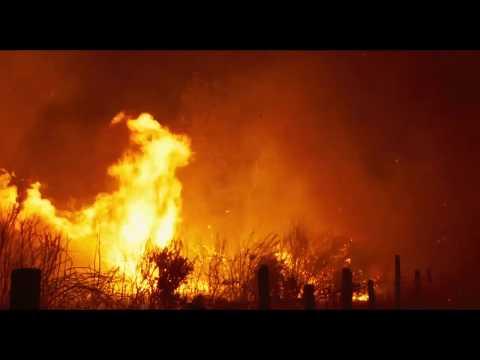Viendra le Feu (Fire Will Come) - Oliver Laxe (bande-annonce)