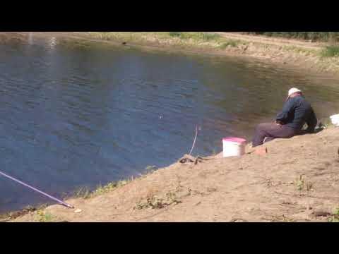 Рыбак спит рыба клюёт