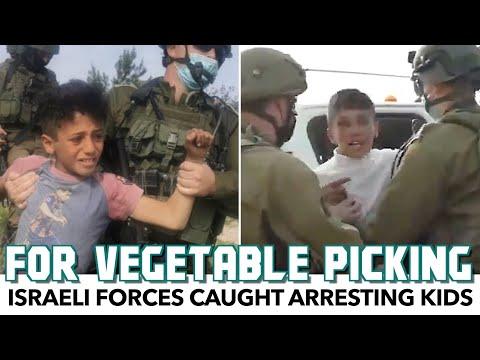 Israeli Forces Caught On-Camera Arresting Kids For Vegetable Picking