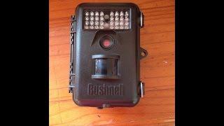 teste camera de trilha  Bushnell com infravermelho