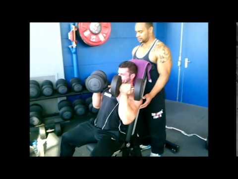 Les muscles des reins et le poids