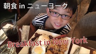 Breakfast in Diner ニューヨークのダイナーで朝食 New York City