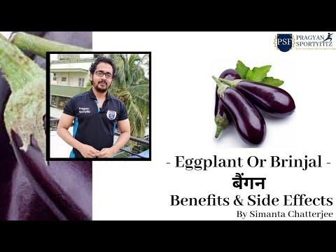 , title : '🇮🇳 बैंगन/BRINJAL/EGG PLANT HEALTH BENEFITS & SIDE EFFECTS By Simanta Chatterjee