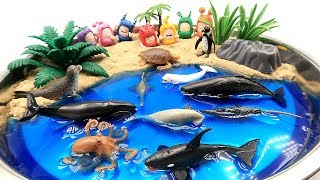 Sea Animals toys and DIY Beach! Learn Sea Animal Names with Ocean Shark and Dolphin Toys For Kids