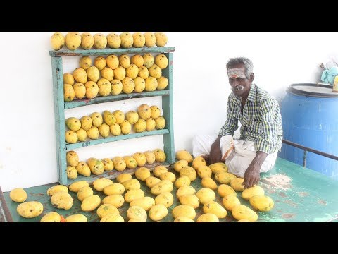 Video MANGO FRESH JUICE / by ARUMUGAM