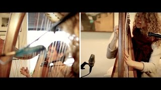 Blue Spotted Tail – Fleet Foxes cover on harp
